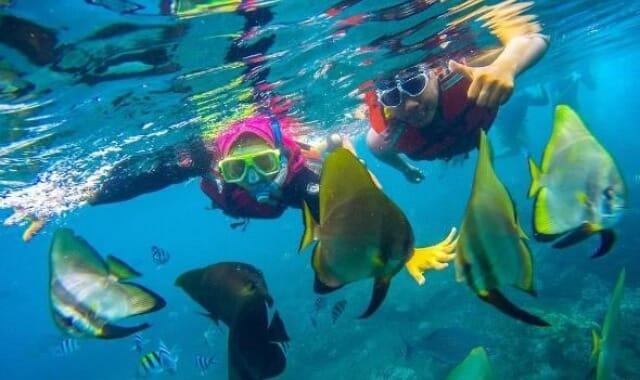 Bangsring Underwater
